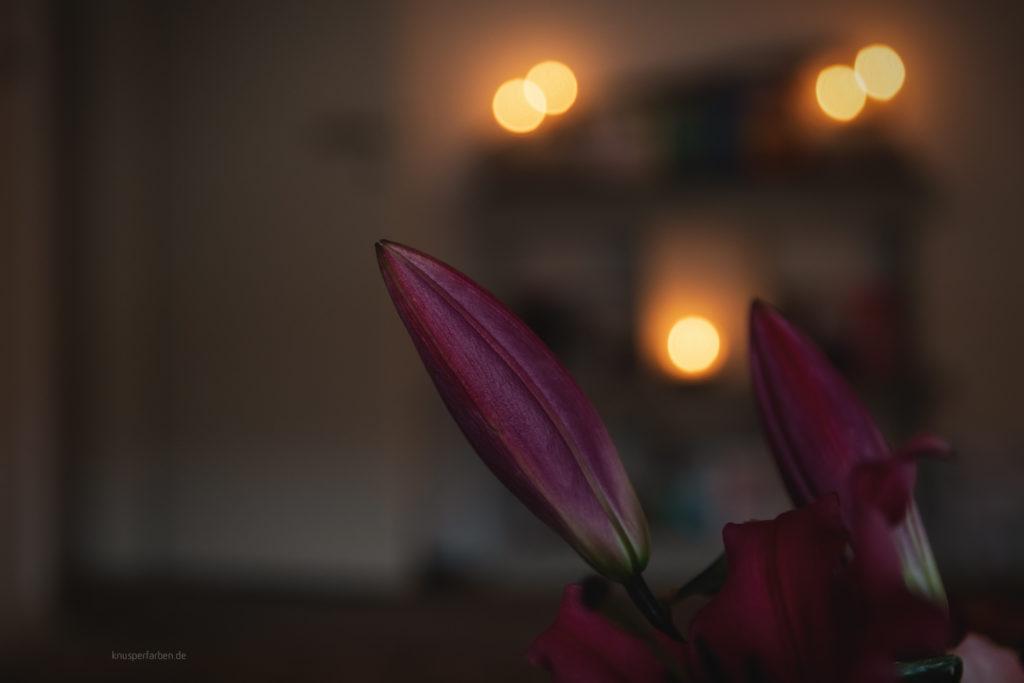 Workshop KuensterIn mit Erfolg Blumen